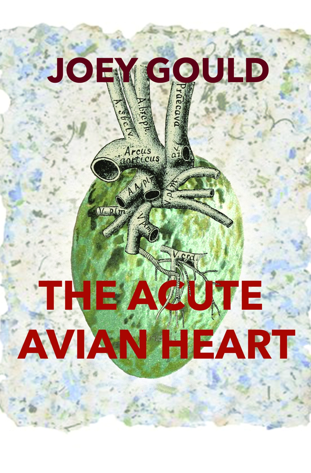 The Acute Avian Heart front cover[19587]